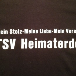 TSV Shirt HP
