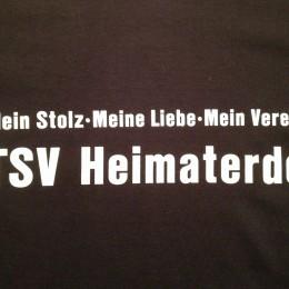 TSV Shirt HP