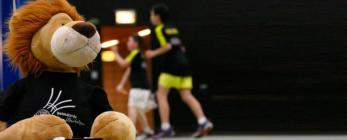 https://www.tsv-heimaterde.de/wp-content/uploads/2016/12/badminton_03.jpg